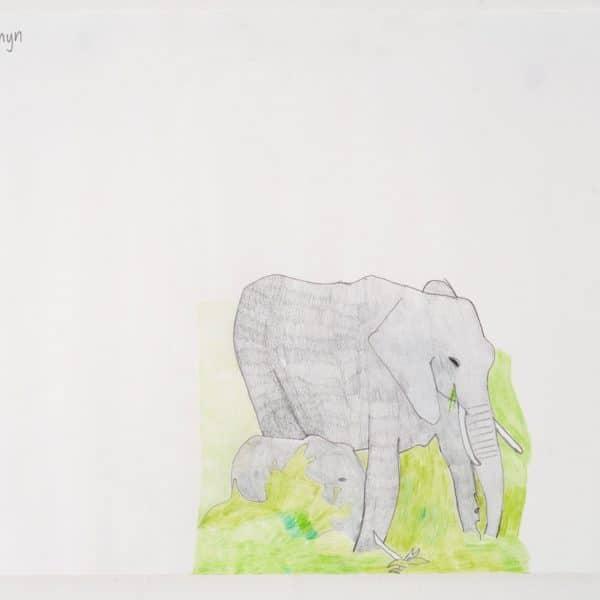 W0396 Neville Jermyn Elephant