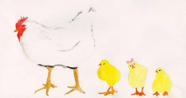 W4066 Chicken Ellen Prebble