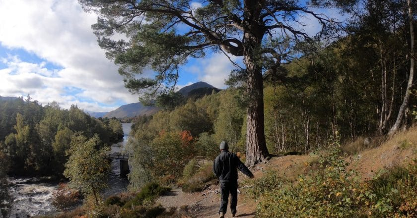 George Smith in the forrest, Glen Affric